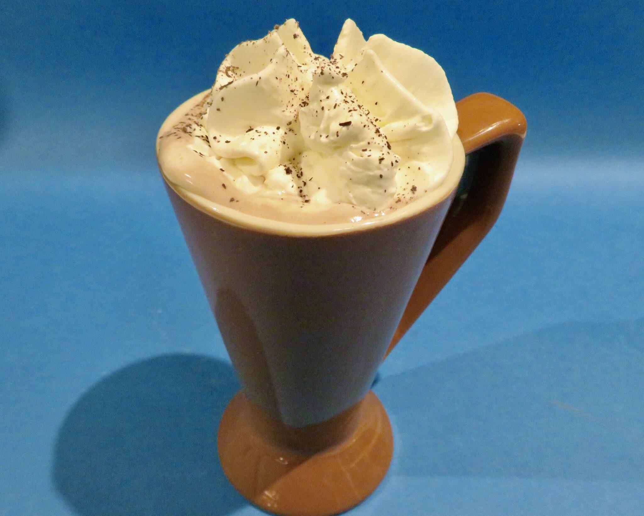 mug or fabulous gourmet hot chocolate
